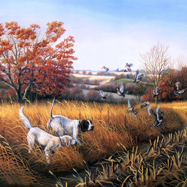 hunting dogs chasing flock