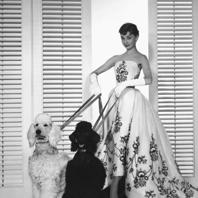 Audrey-Hepburn-sabrina-1954
